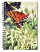 Beach Butterfly Spiral Notebook