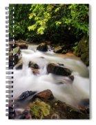 Beautiful Stream In Western Ghats Spiral Notebook