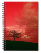 Beauty Stands Against The Terrible Sky Spiral Notebook