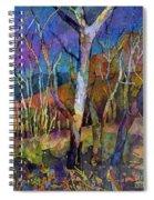 Beyond The Woods Spiral Notebook