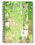 Birch In Spring Spiral Notebook