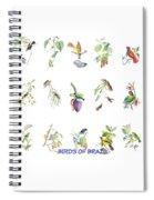 Birds Of Brazil Spiral Notebook