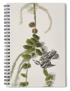 Black And White Creeper Spiral Notebook