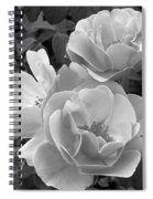 Black And White Roses 2 Spiral Notebook