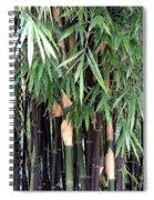 Black Bamboo Spiral Notebook