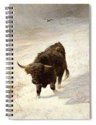 Black Beast Wanderer Spiral Notebook