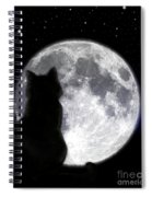 Black Cat And Full Moon Spiral Notebook