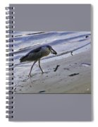Black Crowned Night Heron Spiral Notebook