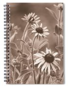 Black-eyed Susans Spiral Notebook