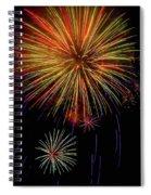 Blooming Fireworks Spiral Notebook