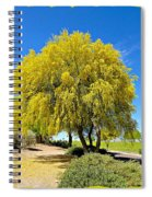 Blooming Palo Verde Spiral Notebook