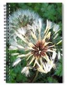 Blown Wishes 2 Spiral Notebook