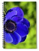 Blue Bonnet Spiral Notebook