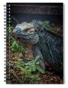 Blue Iguana Spiral Notebook