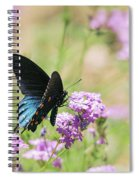 Blue Swallowtail Butterfly  Spiral Notebook
