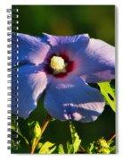 Bluebird Rose Of Sharon Spiral Notebook