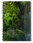 Bluff Falls Spiral Notebook
