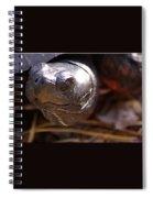 Bog Turtle Spiral Notebook