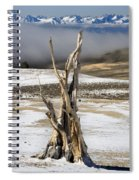 Bristlecone Fog And Sierra Nevada 1 Spiral Notebook