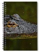 Brown Eye Spiral Notebook