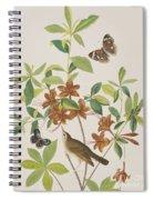 Brown Headed Worm Eating Warbler Spiral Notebook