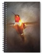 Brushed Rufous Spiral Notebook