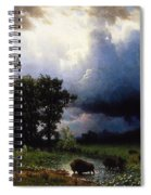 Buffalo Trail  The Impending Storm Spiral Notebook