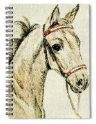 Bulrush Spiral Notebook