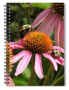 Busy Bees Spiral Notebook
