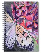 Butterfly Enchantment Spiral Notebook