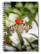 Paper Kite Butterfly Spiral Notebook