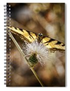 Swallowtail Butterfly Spiral Notebook