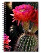 Sonoran Spring Spiral Notebook