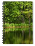 Calming Trees Spiral Notebook