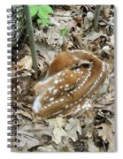 Camouflaged Fawn Spiral Notebook