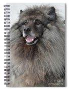Canine Beauty Spiral Notebook