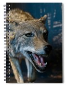 Canis Species Spiral Notebook