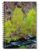 Canyon Color Spiral Notebook
