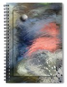 Canyon Girl Spiral Notebook