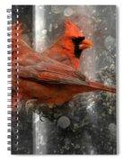 Cary Carolina Cardinals  Spiral Notebook