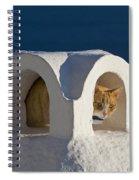 Cat On A Roof, Greece Spiral Notebook