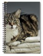 Cat Portrait Spiral Notebook
