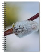 Catkins Spiral Notebook