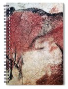 Cave Art Spiral Notebook