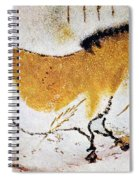 Cave Art: Lascaux Spiral Notebook