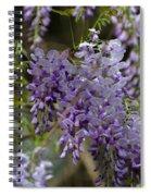 Charleston In The Spring Spiral Notebook