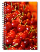 Cherry Spiral Notebook