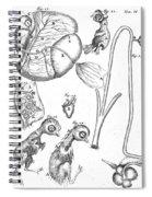 Chick Embryology, Malpighi, 1687 Spiral Notebook