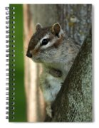 Chipmunk Spiral Notebook