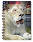 Circus Lion Spiral Notebook